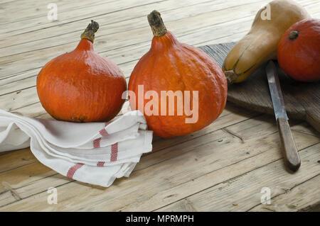 Red hokkaido, Cucurbita maxima, and butternut pumpkin, Cucurbita moschata, on wood - Stock Photo