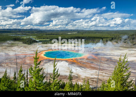 Grand Prismatic Spring on a wonderful summer evening in full color. Just an absolutly amazing place and one of the Natual Wonders of our Planet - Stock Photo
