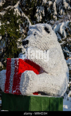 Decorative polar bear with reflection and red box as a gift in the sun and snow in nature, Christmas decoration - Stock Photo