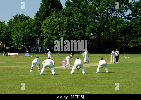 Village cricket at Wellesbourne, Warwickshire, England, UK - Stock Photo