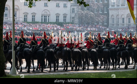 Panorama of black horses belonging to the Household cavalry taking part in the Trooping the Colour ceremony, London UK, - Stock Photo