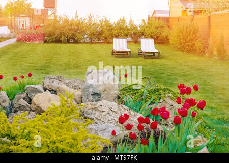 Two white sun loungers are on the green lawn. Toned - Stock Photo