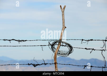 Wire fencing is posted along the Oracle Ridge Trail on Mount Lemmon, Santa Catalina Mountains, Coronado National Forest, Sonoran Desert, Summerhaven,  - Stock Photo