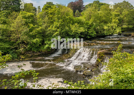 Middle Falls, Aysgarth, Wensleydale, Yorkshire Dales National Park, UK in late spring with very low water level - Stock Photo
