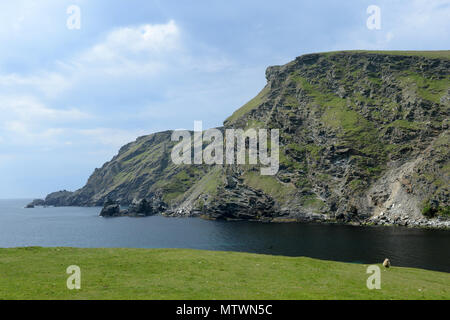 Fitful head  and Garths Ness in Shetland the bay that the MV Braer oil tanker came aground in the January of  1993 - Stock Photo