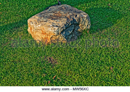a photo of a boulder on grass can have a variety of uses and meanings - Stock Photo