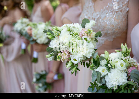Bride and bridesmaids in pink dresses reach out their hands with tender wedding bouquets. wedding traditions - Stock Photo