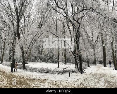 People enjoy the snow in Highgate wood in London on Sunday December 10 2017 Credit: Louisa Cook/StockimoNews/Alamy - Stock Photo