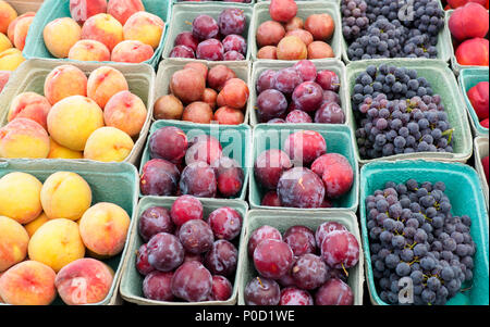 Assorted fruit at a Farmer's Market Stall including, ripe peaches, purple plums, and grapes - Stock Photo