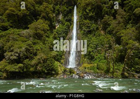 Thunder Creek Falls & Haast River, Haast Pass, Mt Aspiring National Park, West Coast, South Island, New Zealand - Stock Photo
