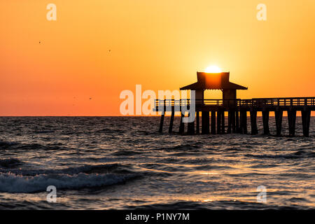 Naples, Florida yellow and orange sunset closeup in gulf of Mexico with sun setting inside Pier wooden jetty, with many birds silhouette flying over h - Stock Photo