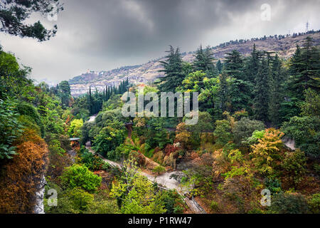 Aerial view of Botanical Garden with autumn trees at overcast cloudy sky in Tbilisi, Georgia - Stock Photo