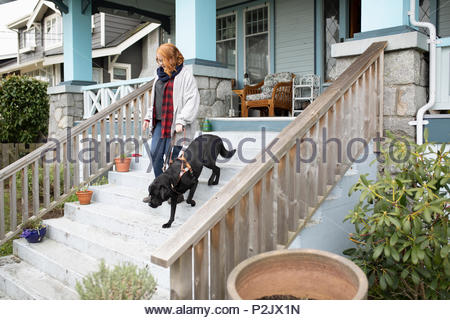 Seeing eye dog leading visually impaired woman down stairs - Stock Photo