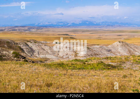 Grasslands at Egg Mountain area near Choteau, Montana. Egg Mountain with nests and eggs of the duck-billed dinosaur, Maiasaura peeblesorum. - Stock Photo