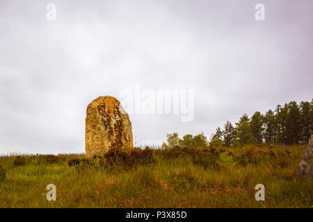 Large upright stone, Menhir,  in a prehistoric cemetery from the Bronze Age, Vatteryd grave field, Hassleholm, Sweden, May 11, 2018 - Stock Photo