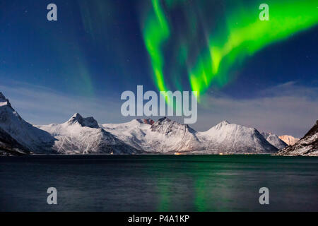 Northern lights (aurora borealis) at Mefjorden fjord, Berg in Troms, Norway, Senja, nordland, norway, europe - Stock Photo