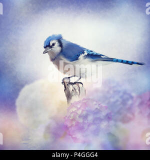 Blue jay in Flower garden,watercolor painting - Stock Photo