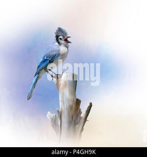 Blue Jay bird perched,watercolor painting - Stock Photo