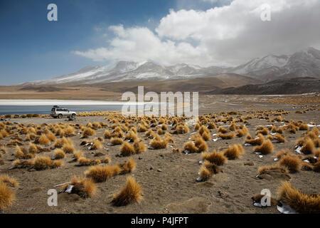 Lake Canapa, Atacama Desert, Bolivia - Stock Photo