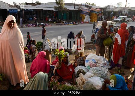 ETHIOPIA , Oromia, Alem Maya, chewing drug khat market, somali women sell fresh harvested khat leaves at the road, the khat is grown in the surounding villages / AETHIOPIEN, Oromia, Alem Maya, Markt fuer die Kaudroge Khat, die in den umliegenden Doerfern angebaut wird, Somali Frauen verkaufen frisch geerntete Kat Blaetter - Stock Photo