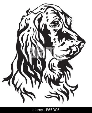 Decorative portrait of Dog English Setter, vector isolated illustration in black color on white background. Image for design and tattoo. - Stock Photo