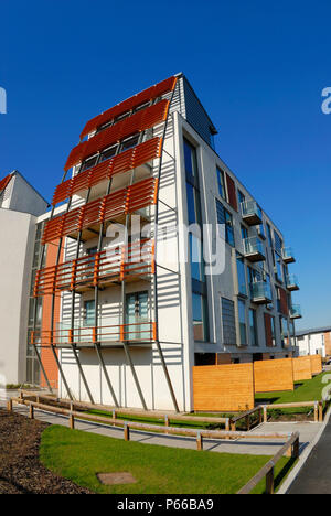 Innovative and environmentally friendly homes being built in the deprived and run down East Manchester area of Beswick, known as eastlands, under the  - Stock Photo