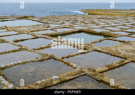 Rectangular salt pans surrounded by rocks on Gozo island in Malta - Stock Photo