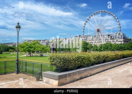 Tuileries garden, Ferris wheel in the background, Paris, France - Stock Photo