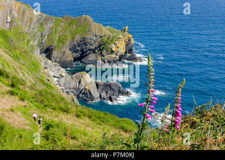 Coast Path, coastal path near Polperro, Cornwall, England, UK - Stock Photo