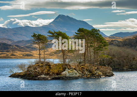 Canisp from Loch Druim Suardalain, Glen Canisp Forest, near Lochinver, Coigach, Sutherland, Highland Region, Scotland, UK - Stock Photo