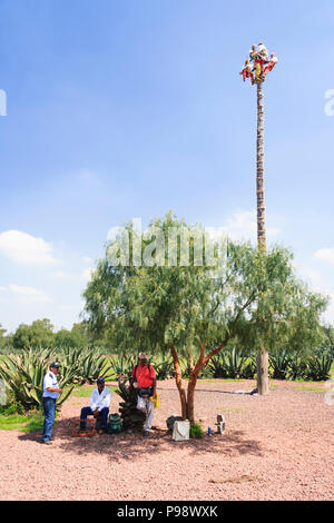 Teotihuacan, Mexico : Totonac people dressed in traditional clothes performing the Voladores or Flying Men ceremony named an Intangible cultural herit - Stock Photo