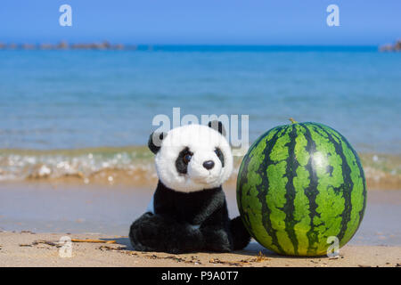 A cute panda stuffed toy sitting by the whole watermelon on the beach with blue ocean in summer. - Stock Photo