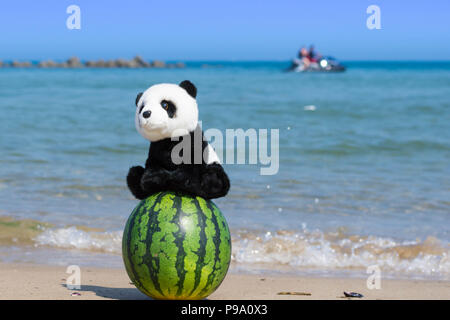 A cute panda stuffed toy sitting on a whole watermelon on the beach with blue ocean in summer. - Stock Photo