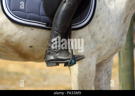 a black boot of rider in the stirrup tighten on the horse, the foot in the stirrup - Stock Photo
