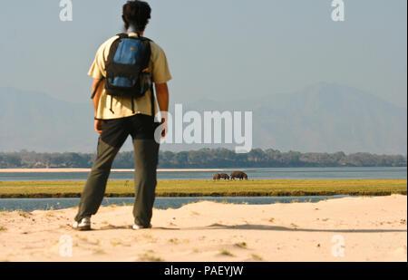 Walking Safari. Mana Pools National Park. Zimbabwe - Stock Photo