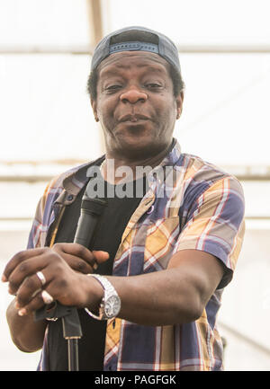 Kent, UK. 21st July, 2018. 21st July 2018  - Vicars Picnic - Music Festival Day 2 Performance  in Comedy tent - artist Stephen K Amos  Credit Glamourstock Credit: glamourstock/Alamy Live News - Stock Photo