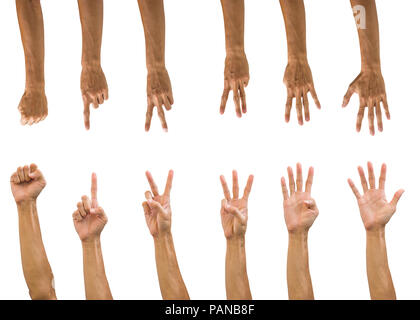 Set of hand gesture isolated on white background with clipping path. Collection of multiple front and back hands count numbers. upside down hand. - Stock Photo