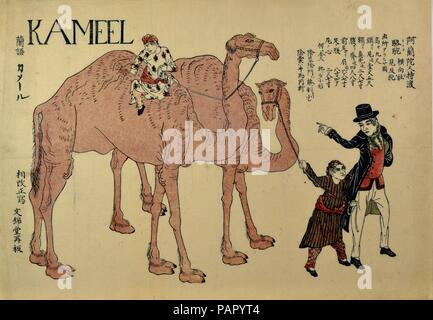Camels with Dutch Handlers. Artist: Unidentified Artist Japanese, 19th century. Culture: Japan. Dimensions: Sheet: 12 3/8 x 17 5/16 in. (31.4 x 44 cm). Date: ca. 1821.  In this horizontally oriented, oversized (dai-oban) woodblock print, a Dutchman escorts the procession of a male and female camel handled by two Arabian attendants in handsomely patterned clothes. At the upper left is the Dutch word 'KAMEEL,' and the term is defined in Japanese to the left. At the upper right is a detailed account of the physical attributes of the animals with the heading, 'Camels brought over by the Dutch.'. M - Stock Photo