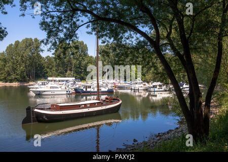 the marina of Mondorf located on an old arm of the river Sieg near the estuary into the Rhine, historic eel schokker 'Maria Theresia', Mondorf, German - Stock Photo
