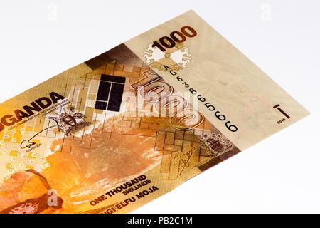 1000 Ugandan shillings bank note. Ugandan shilling is the national currency of Uganda - Stock Photo