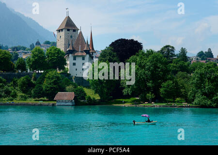 Schloss Spiez, Spiez am Thunersee, Niedersimmental, Kanton Bern, Schweiz - Stock Photo