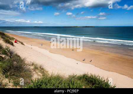 View from the top of the sandundes at White Rocks - Stock Photo