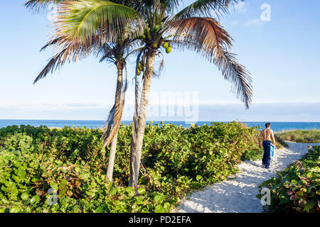 Florida Delray Beach Atlantic Ocean Ocean Boulevard public beach coconuts palm trees dune pathway path access man beachgoer shir - Stock Photo