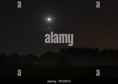 Night sky over forest, visible full eclispse of Moon, Mars in perigee - Stock Photo