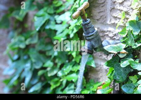 A running an outdoor garden tap - Stock Photo