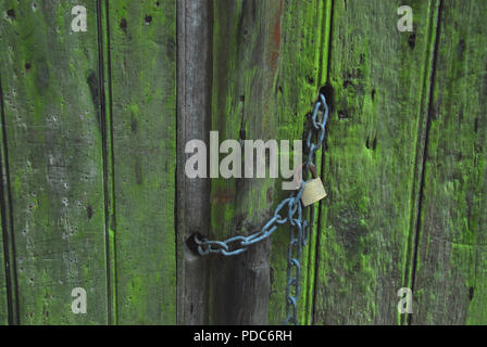 A sinister image of an ancient wooden door with many holes, made by what? Note the rusted lock and green slime. - Stock Photo