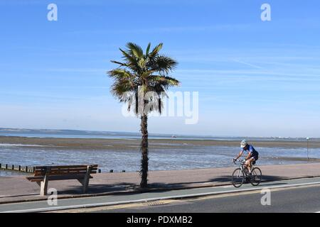 Southend-on-Sea, Essex, UK. 11th August, 2018. UK Weather: A warm start to the day in Southend - a view of a Man cycling along the sea front Credit: Ben Rector/Alamy Live News - Stock Photo