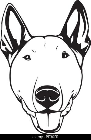 Bull Terrier Dog Breed Pet Puppy Isolated Head Face - Stock Photo
