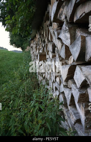 stack of wood at edge of forest - Stock Photo
