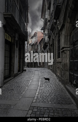 Surreal cityscape. Empty old street from Porto, Portugal, with a mysterious cat on the foreground. - Stock Photo